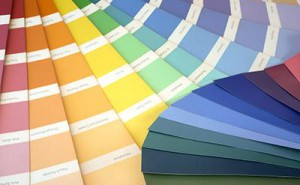 House Interior paint colors