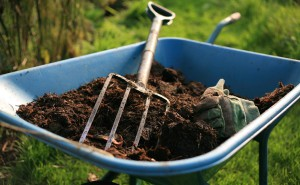 Easy Ways to Make Compost from Household Waste