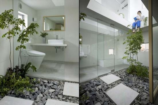 small garden inside house
